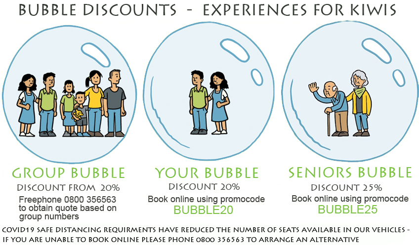 Bubble discounts