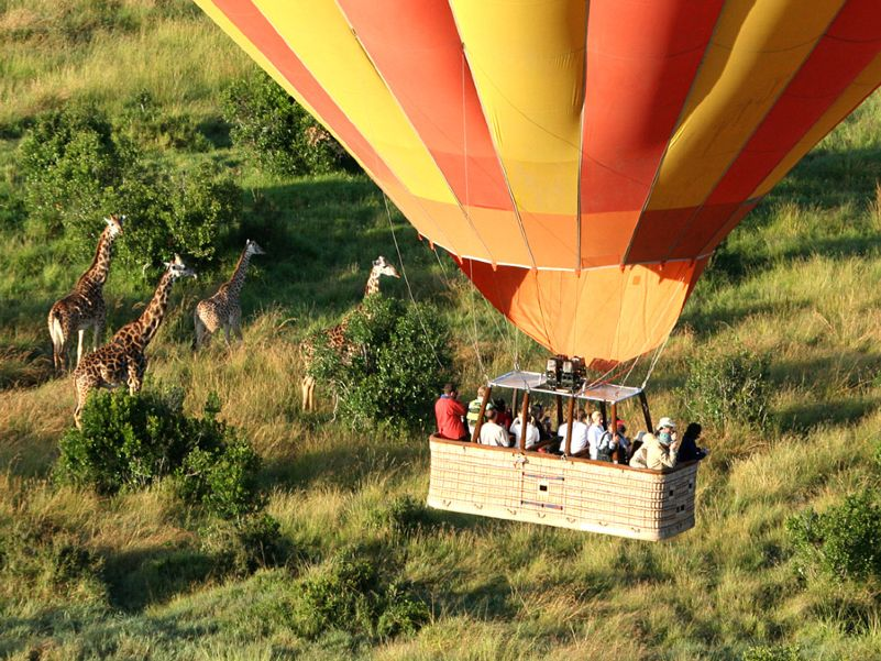 Africa - Hot air balloon over Masai Mara wildlife (Kenya)